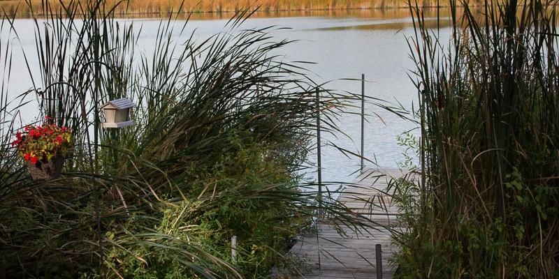 Long Grove Pond